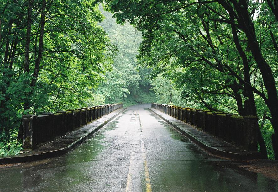 Wet roads